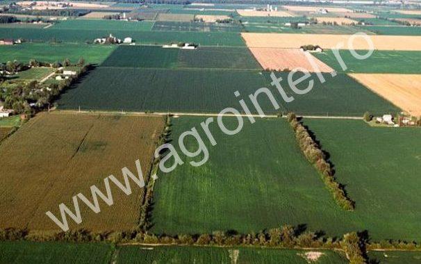 impozit pe teren agricol 2016