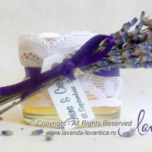 Products Butasi Lavanda Plant Craiova Buchete Lavanda Floare