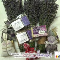 produse-lavanda-by-lavanda-plant-craiova-romania